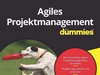 Agiles Projektmanagement Dummies