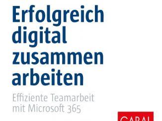 Team-Arbeit-Microsoft